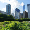 things to do in chicago